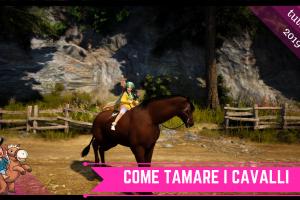 Come catturare i cavalli