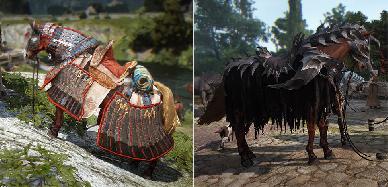 Dove Trovare e Come Tamare i Cavalli