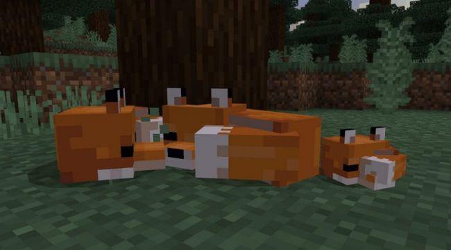 Minecraft introduce le volpi, funghi e il Suspicious Stew