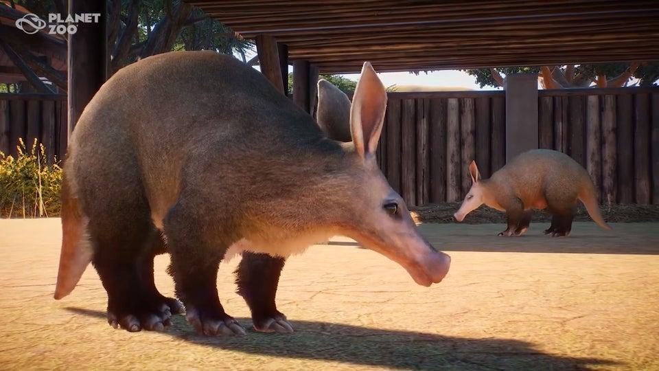 In Planet Zoo ci saranno anche i formichieri
